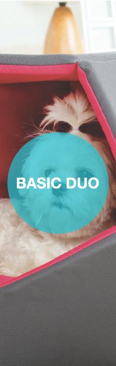 Basic Duo